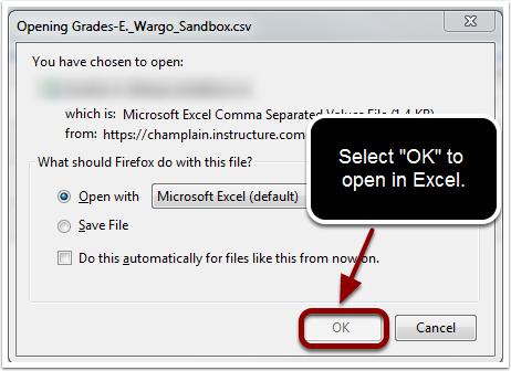Dialog box for opening a CSV file with Excel