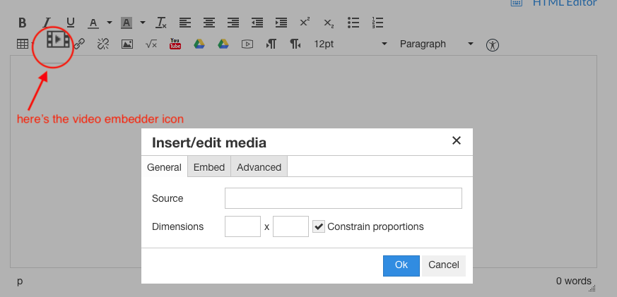 Screenshot of the insert/edit media dialogue with the Rich Content Editor toolbars in the background. The icon for inserting video is circled in red.