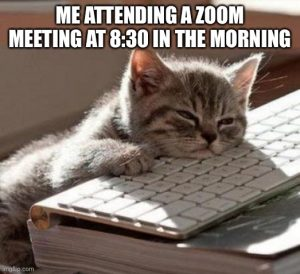 Meme of a cat with eyes half closed resting its chin on a keyboard. Caption reads: me attending a Zoom meeting at 8:30 in the morning.